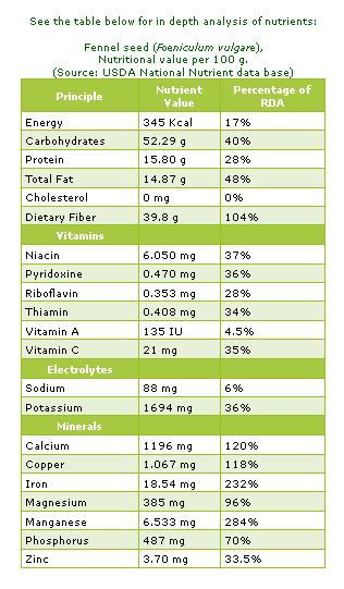 fennel seeds nutritional value